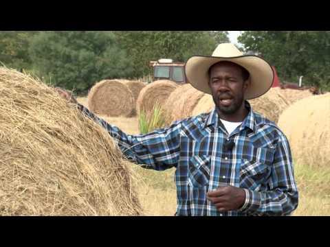 Rickie Roddy Lloyd Wright Small Farmer of the Year Video