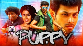 Puppy 2020 New Released Hindi Dubbed Full Movie | Varun, Samyuktha Hegde, Yogi Babu