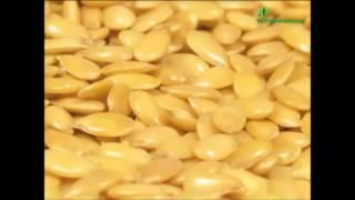 Диета при артрите - Мясо и семена льна