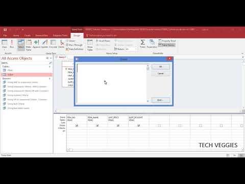 Creating a simple Parameter Query using MS Query Design | Tech Veggies