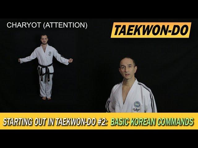 Starting out in Taekwon-Do #2: Basic Korean commmands
