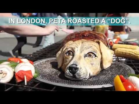 Londoners Were Offered Dog Meat – This Is How They Reacted