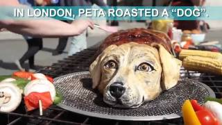 Repeat youtube video Londoners Were Offered Dog Meat – This Is How They Reacted
