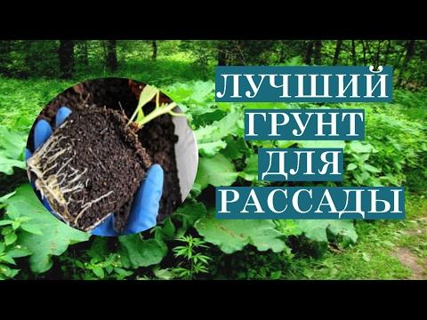 Как самому приготовить землю для рассады .Лучший состав грунта для рассады.