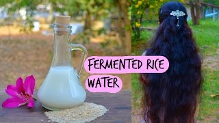 How To Make & Use Fermented Rice Water For Hair Growth, Hair Loss & Long Natural Black Hair