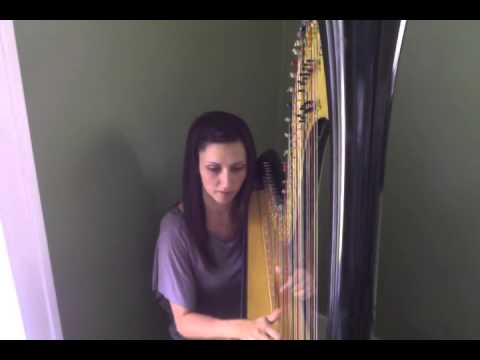 Nicole Marie Foster Harpist - Such Great Heights - Iron & Wine (Cover)