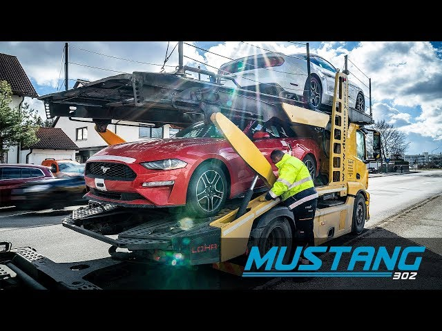 Neue Mustang Lieferung / US-Import - MUSTANG 302 GmbH