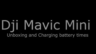 Dji Mavic Mini how long does it take to charge the batteries