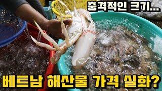 베트남 싱싱한 해산물 시장! 충격적인 가격... 실화냐?ㄷㄷ | Fresh Seafood In Vung Tau, Vietnam