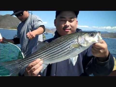 Striped bass fishing diamond valley lake 4 15 12 youtube for Diamond valley fishing report