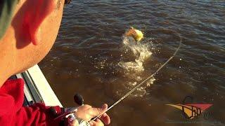 Pesca con artificiales en Goya, Corrientes, Argentina