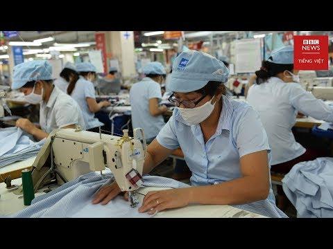 Thực Chất 'Nhà Nước, Chính Phủ Kiến Tạo' ở Việt Nam Là Gì?
