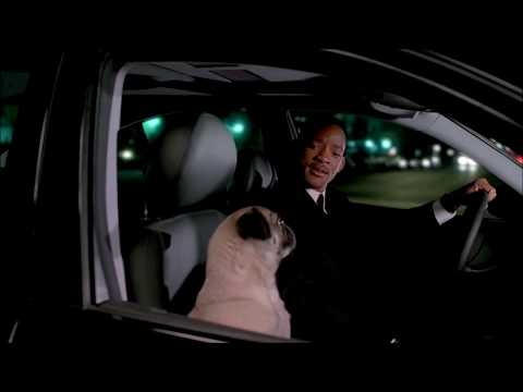 Singing Dog (Men in Black ♊)