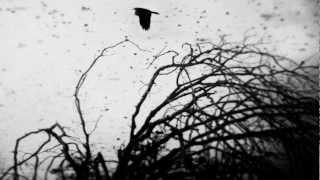 Mastodon - The Sparrow