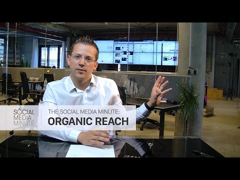 Social Media Minute: Facebook Organic Reach | Brands vs Media