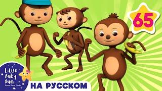 Пять маленьких обезьянок | детские песенки для самых маленьких | от Литл Бэйби Бум