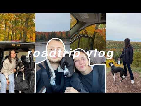 a short vlog because it's my bday and i feel like it
