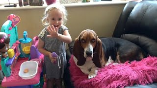 Cute Dog and Baby Meet Basset Hound for a First Time