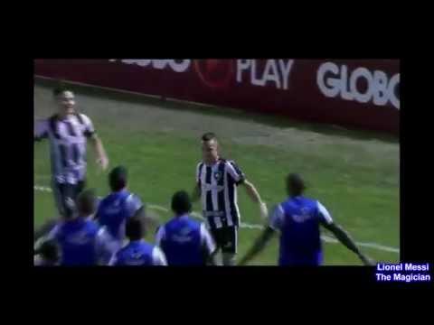 Botafogo 3 x 1 Palmeiras melhores momentos - Brasileirão 31/07/2016