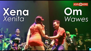 Video Heboh Xena xenita Vs Om Wawes ilang roso download MP3, 3GP, MP4, WEBM, AVI, FLV Desember 2017