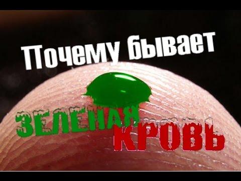 Почему зеленая кровь у