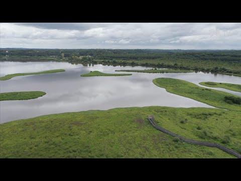 À la découverte de la réserve naturelle du Marais d'Orx