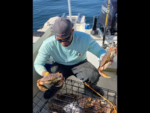 Catching Dungeness Crab In Half-moon Bay For The SEASON OPENER!!!