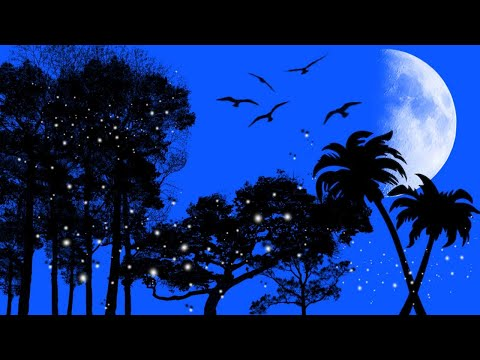 Night Scenery Drawing Using Photoshop