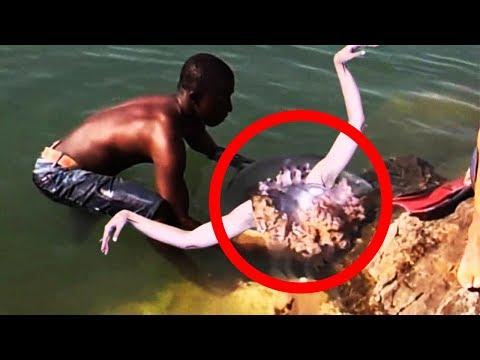 6 Meerjungfrauen die auf Kamera festgehalten wurden! 😱