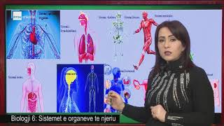 Biologji 6 - Sistemet E Organeve Te Njeriu