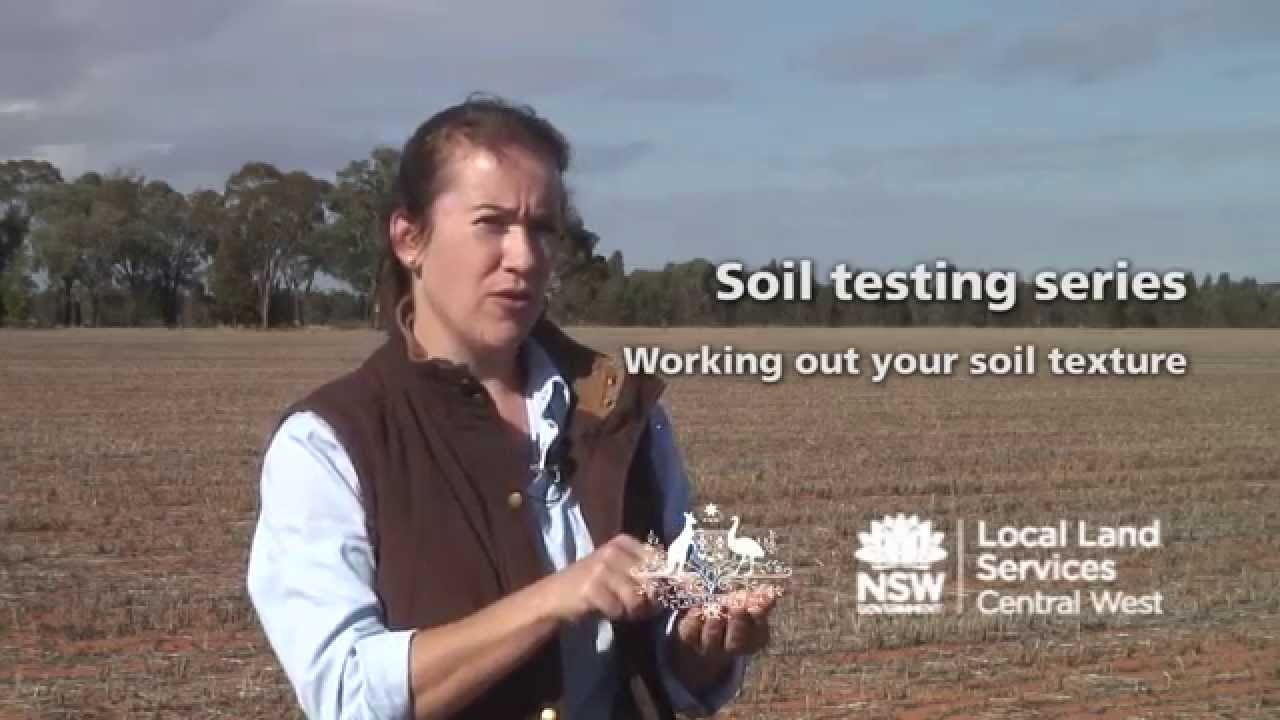 How to test your soil texture sand silt clay for Soil ribbon test