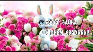 Zoobe Зайка, с Днем Свадьбы!