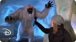 The Abominable Snowman Inside the Matterhorn | Disneyland Resort