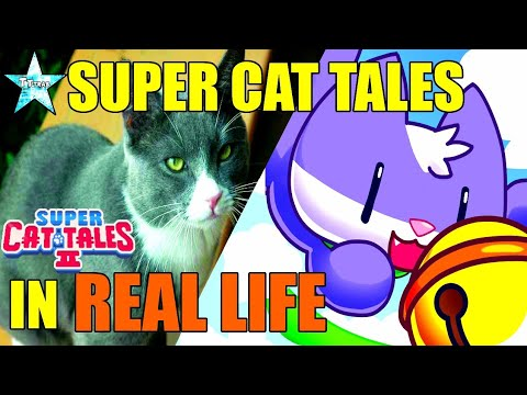 Super Cat Tales in REAL LIFE?