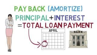Loans 101 (Loan Basics 1/3)