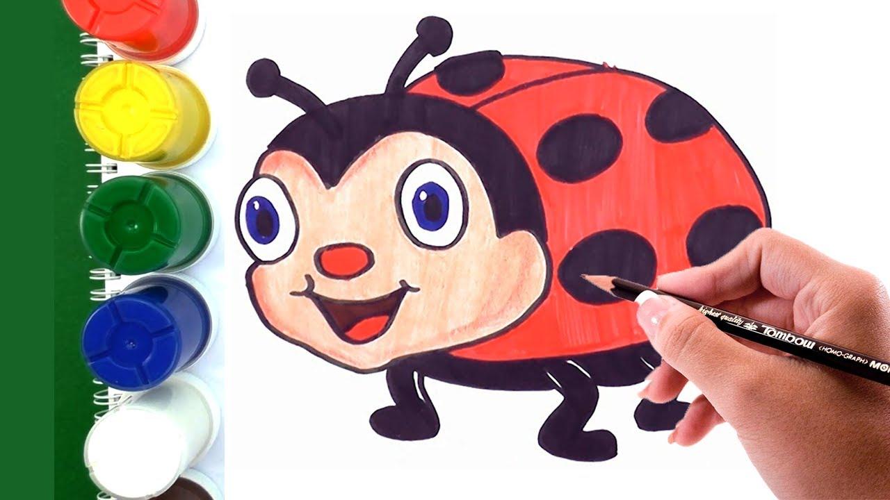 Dibujando y Coloreando a Mariquita