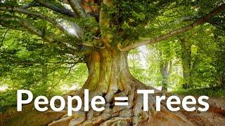 3 reasons people are like trees