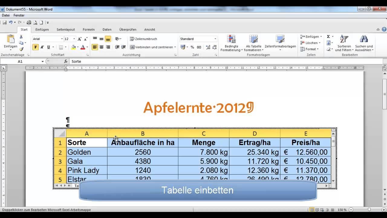 UD 17 - Excel-Tabelle in Word einfügen, einbetten und verknüpfen ...
