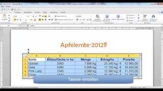 UD 17 - Excel-Tabelle in Word einfügen, einbetten und verknüpfen