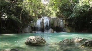 Cohérence cardiaque - Relaxation - Pranayama - Pleine Conscience