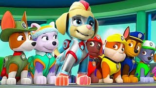 Paw Patrol | All Mighty Pups On a Roll Rescue Mission | Mighty Twins in Action Nick Jr. HD