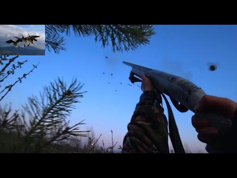 Охота на гусей \