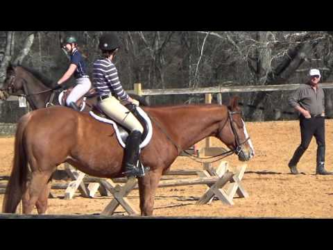 Jumping Clinic with Bill Woods