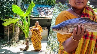 Giant Taro with Fish Cooking Recipe by Village Food Life