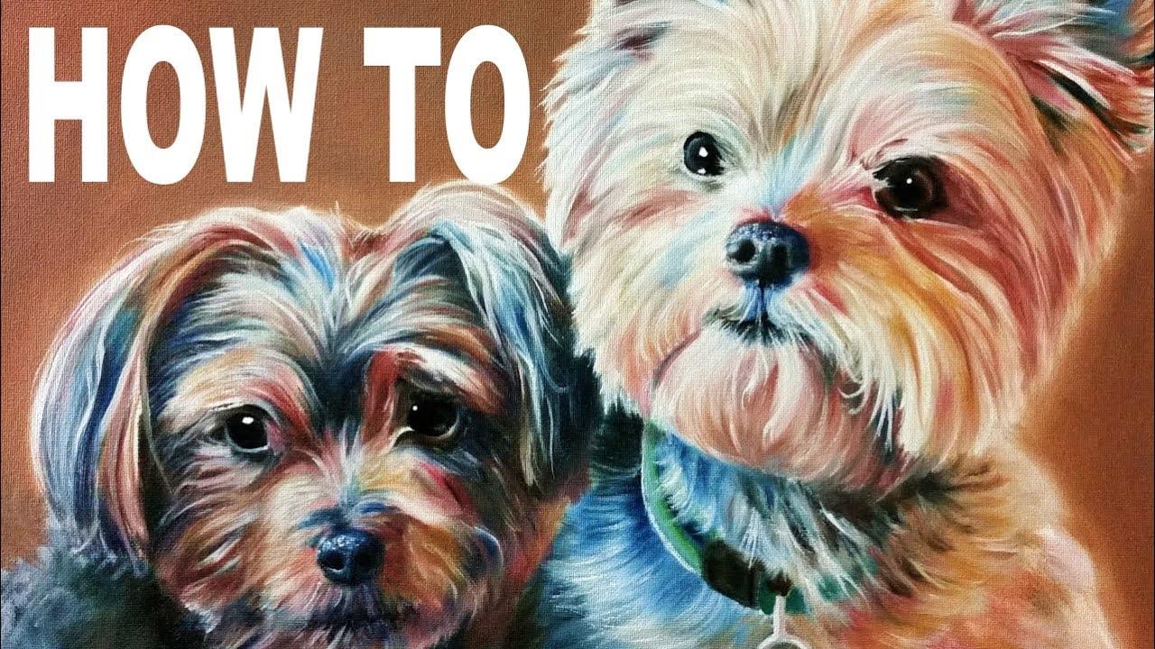 Painting Yorkie Dogs Tutorial Youtube
