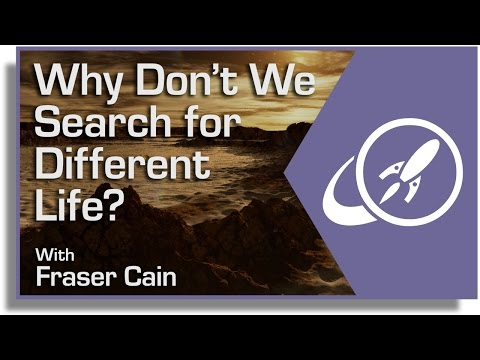 why-don't-we-search-for-different-life?