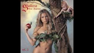 Download Lagu Shakira - Hips Don t Lie Feat Wyclef Jean MP3