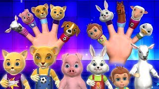 Finger Family Song - 3D Animals Finger Family Nursery Rhymes & Songs for Kids
