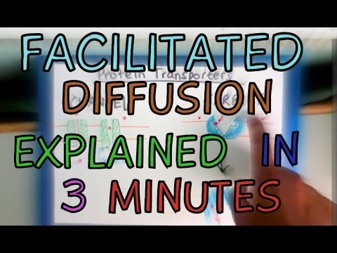 Biology Help: Facilitated Diffusion explained in 3 minutes!!