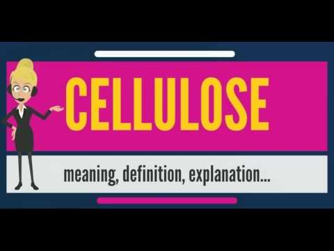 What is CELLULOSE? What does CELLULOSE mean? CELLULOSE meaning, definition & explanation